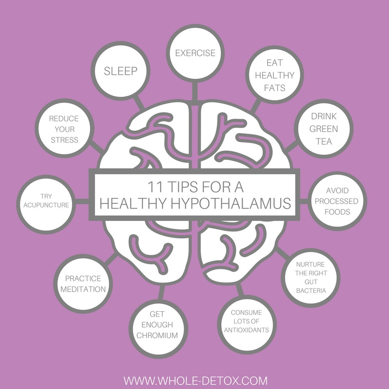 11 Tips for a Healthy Hypothalamus