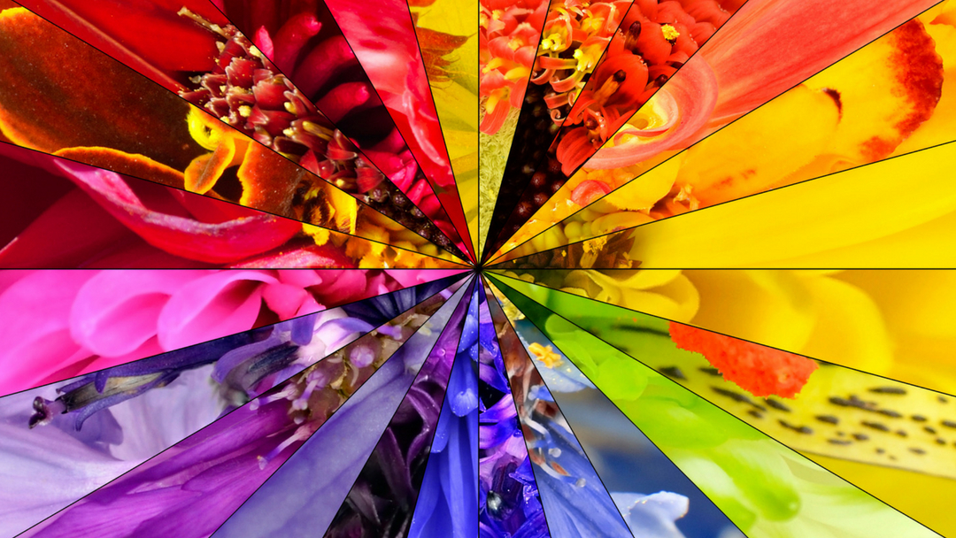 How Color Changes Your Emotional Health
