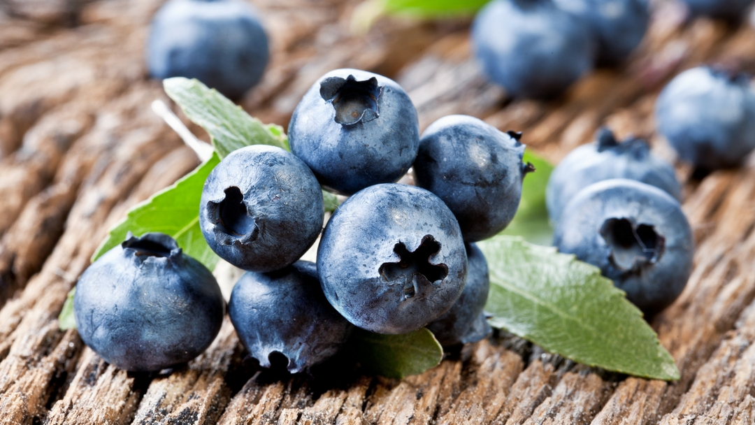Blue and Purple Foods and Your Brain